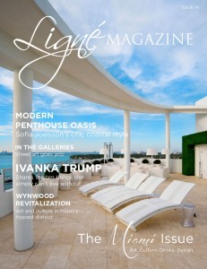 Ligne Magazine Issue XI Cover