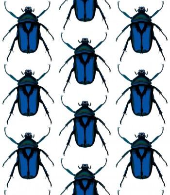 BEETLE_CLEAR_BLUE
